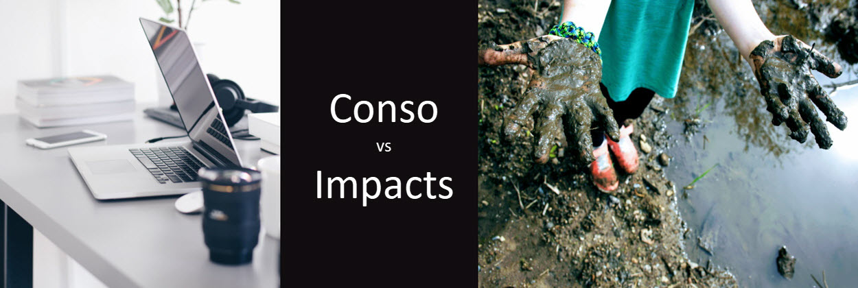 Consomation vs Impacts